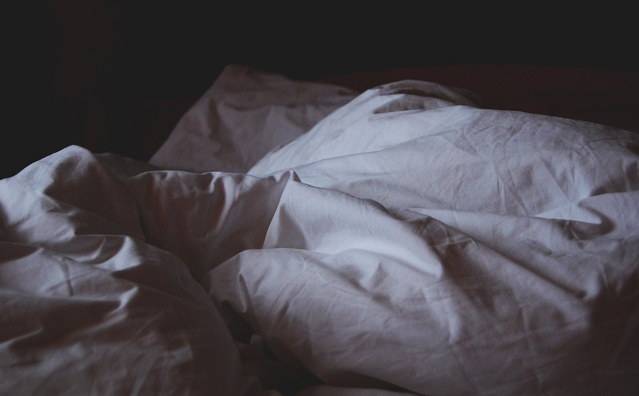 What Causes A Bed Bug Infestation
