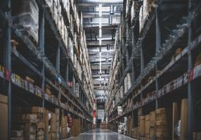 warehouse pests